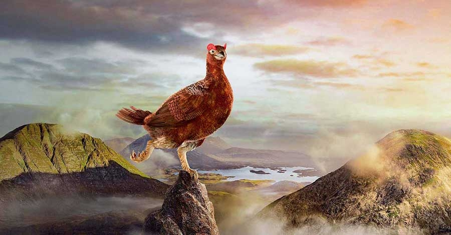 Die Marke: The Famous Grouse